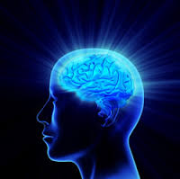 The more NADH the brain has the more brain activity ocurrs