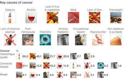 Best cancer prevention