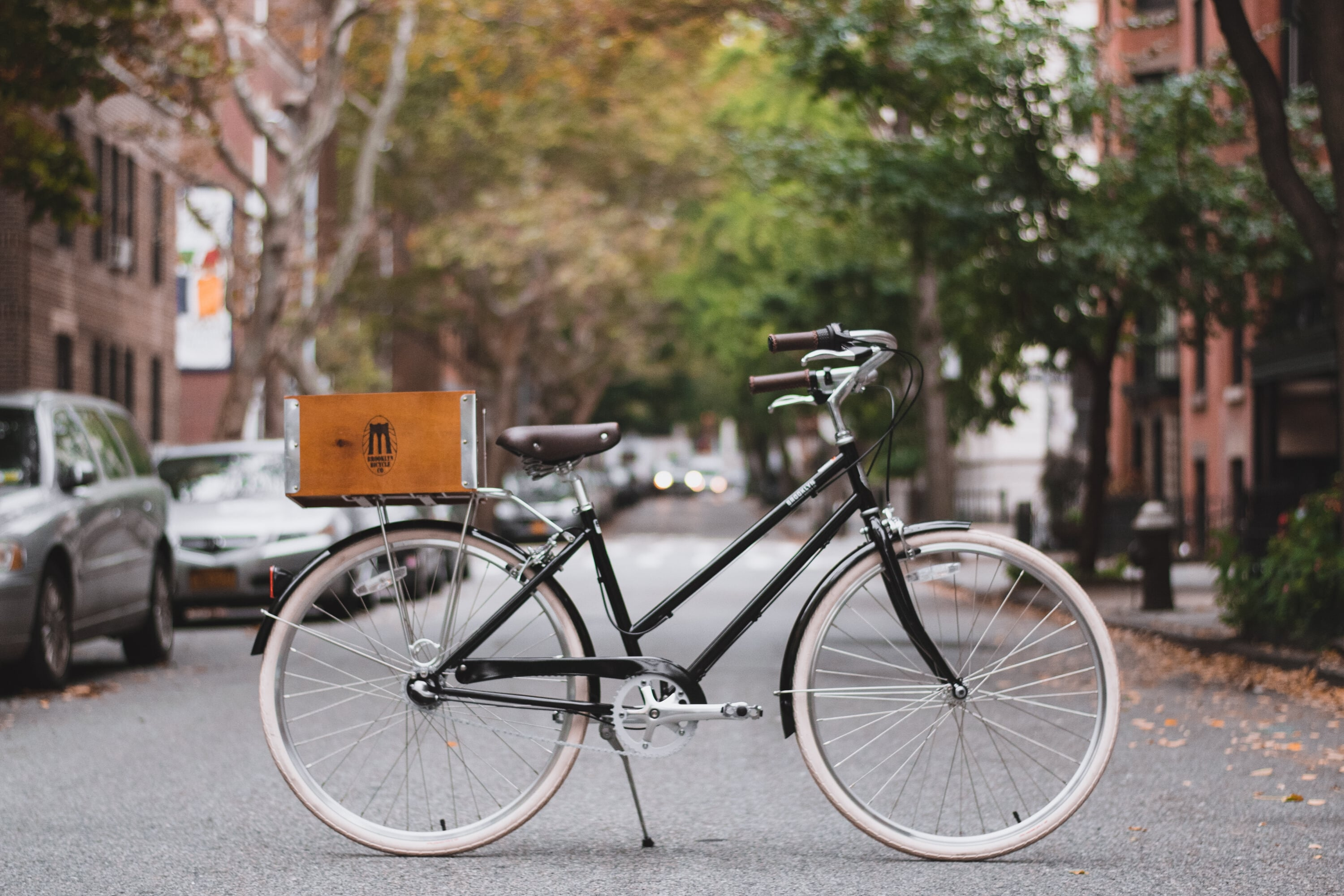Brooklyn Bicycle Co. Willow