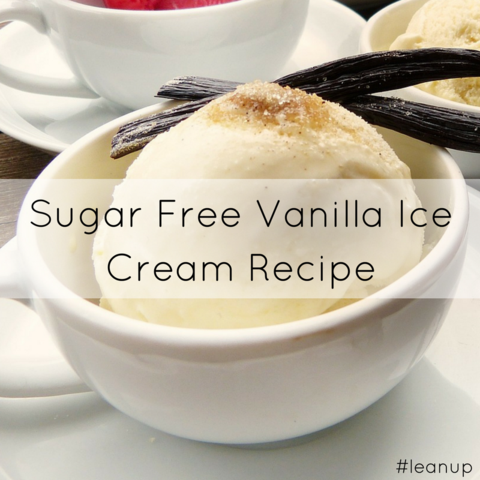 Sugar Free Vanilla Ice Cream Recipe LeanerMe Leaner Creamer Recipe Blog