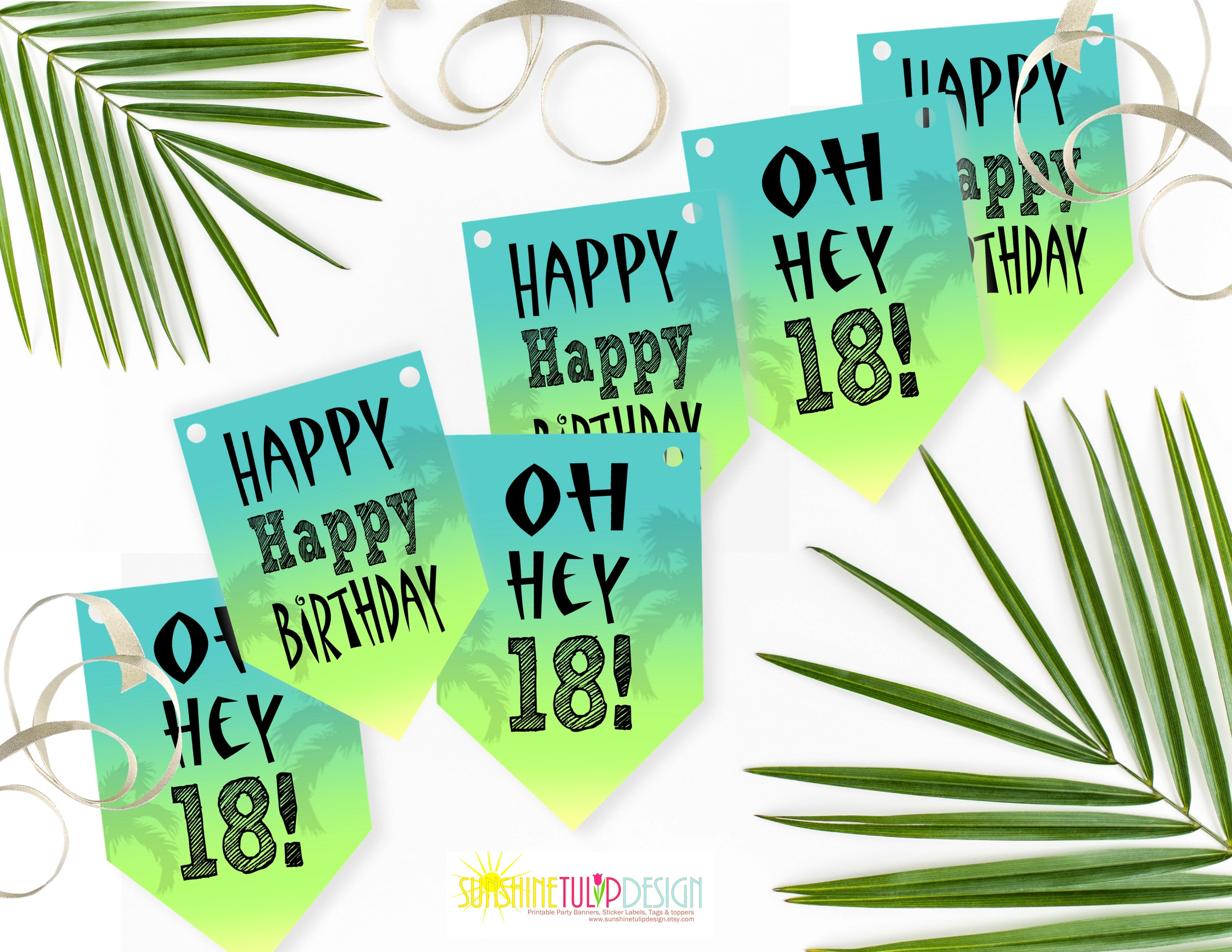 picture regarding Printable Party named Printable 18th Birthday Get together Selection, Printable Ombre Occasion Decorations through SUNSHINETULIPDESIGN
