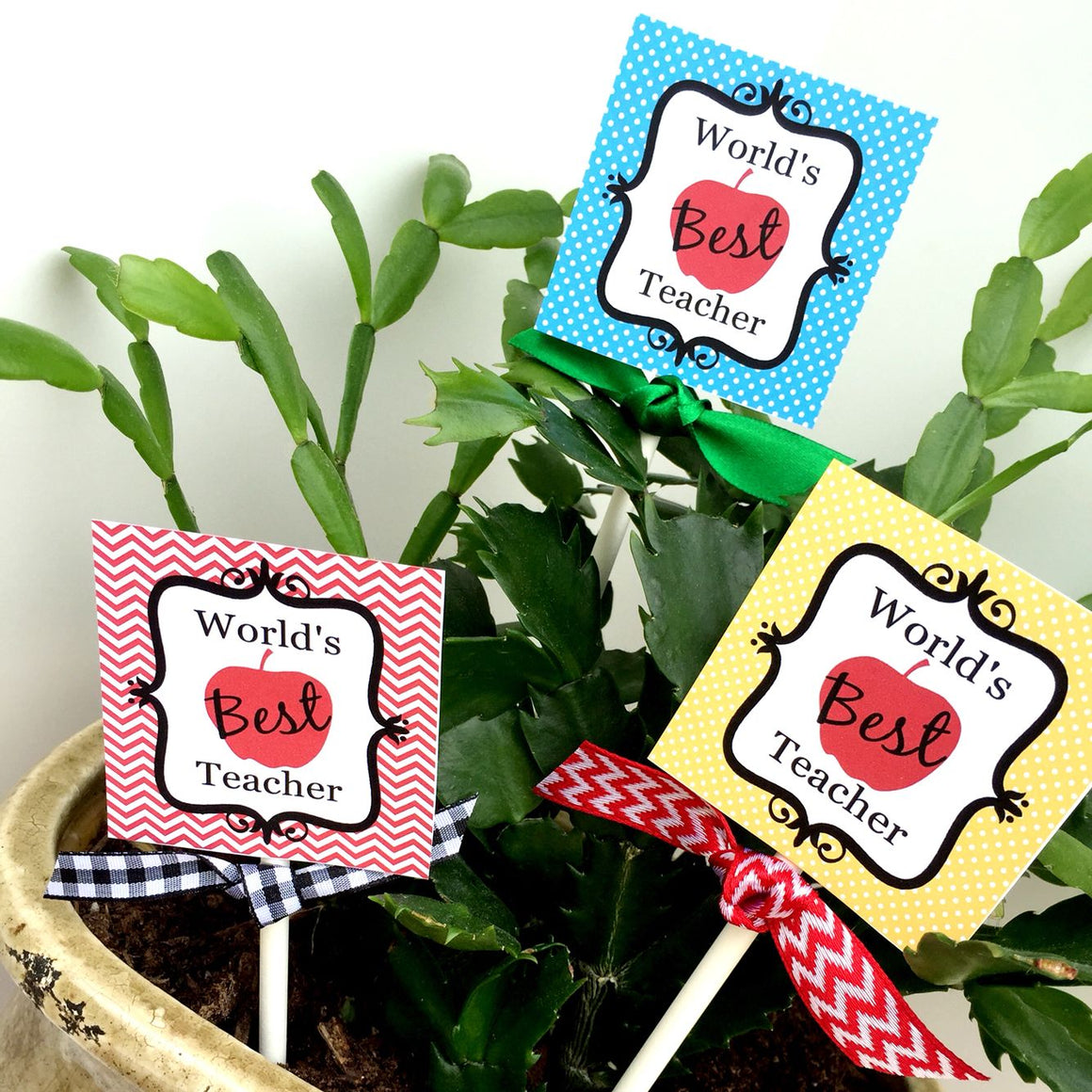 Prinable Teacher Appreciation Tags, World's Best Teacher Gift Tags, Teacher Appreciation Plant Stake Tags by SUNSHINETULIPDESIGN