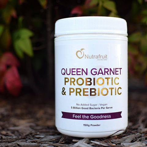 Queen Garnet Probiotic & Prebiotic Powder