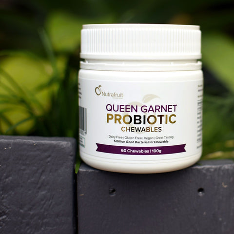 Queen Garnet Probiotic Chewables