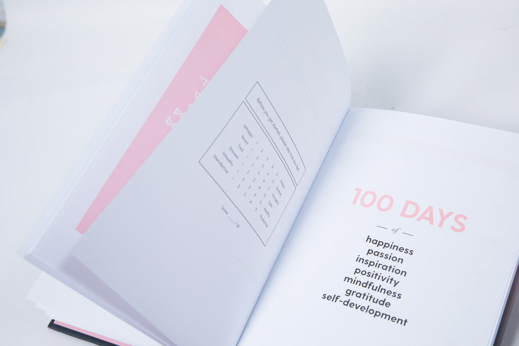 The 100-Day Planner | Pink & Gold - The Happiness Planner®