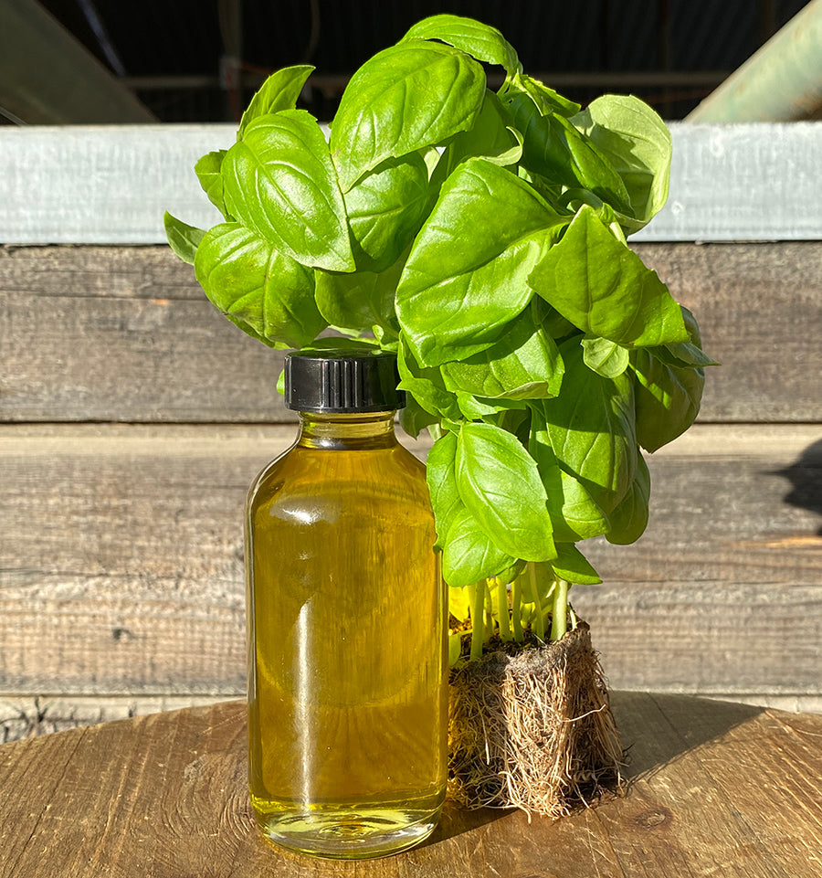 Bounty & Full Oil and Salt Bundle (Basil)