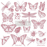 Clearly Aligned Decor Stamp - Monarch Collection