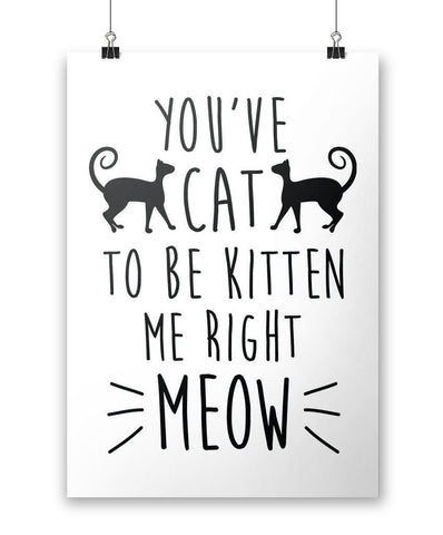 You've Cat To Be Kitten Me Right Meow - Poster - white background