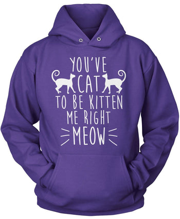 You've Cat To Be Kitten Me - Pullover Hoodie / Purple / S