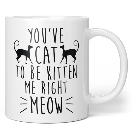 You've Cat To Be Kitten Me - Coffee Mug / Tea Cup
