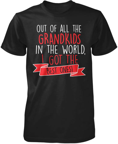 The Best Grandkids In the World - T-Shirt
