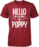 Hello my New Name Is Poppy