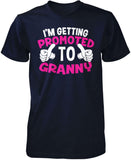 I'm Getting Promoted to Granny