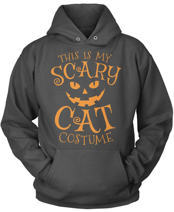 This Is My Scary Cat Costume - Pullover Hoodie / Dark Heather / S