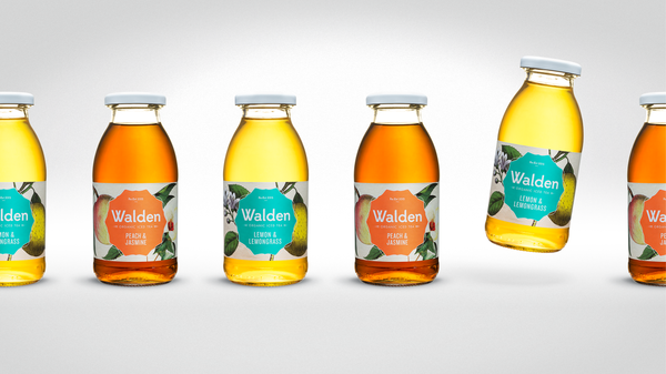 Walden Organic Ice Tea available through MARLENKA UK