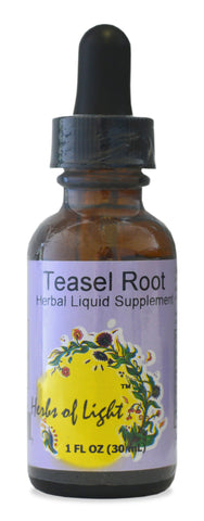 Teasel Root Herbal Extract, 1 ounce