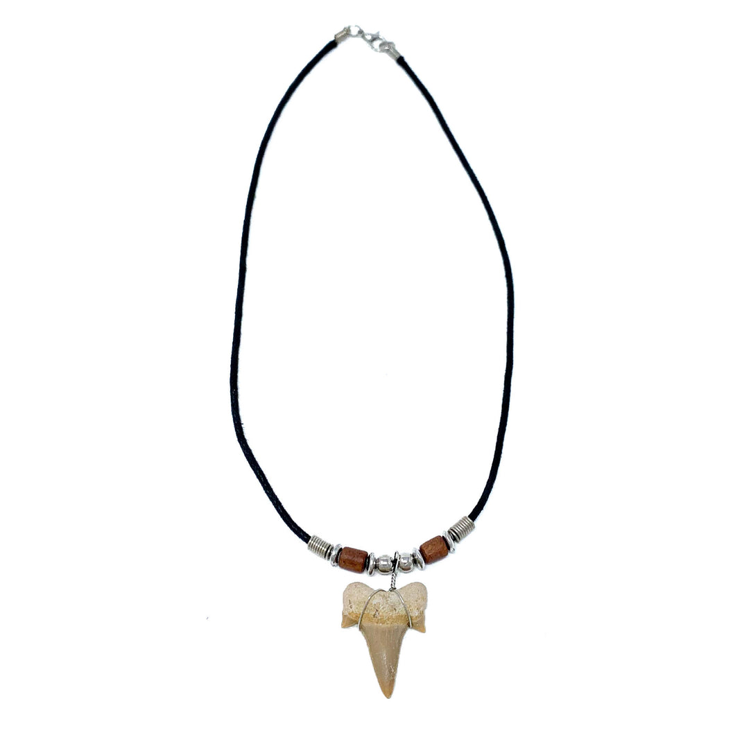 real sharks tooth necklace with a fossilized sharks tooth