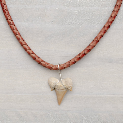 Braided Leather Bolo Shark Tooth