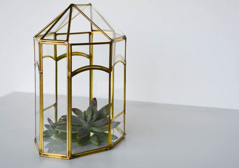 Glass and Brass Display Box