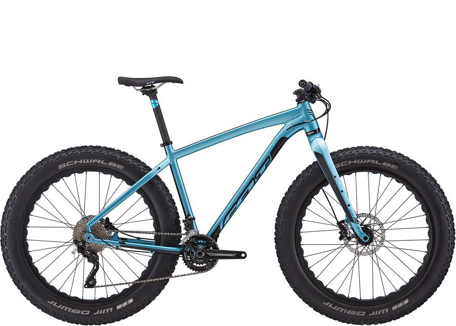 DD 30 Felt Fat Tire Mountain Bike - MN Surf Co