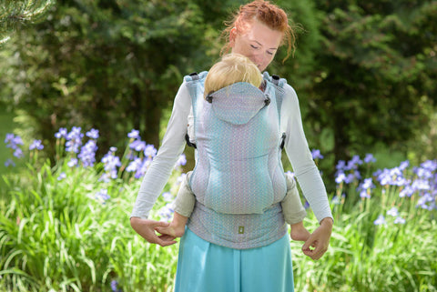 Lenny Lamb Ergonomic Carrier - Little Love Zephyr