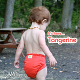 AMP One-Size Duo Diaper - Tangerine