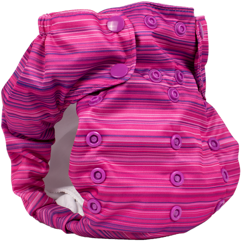 Smart Bottoms Dream Diaper 2.0 - Highlands * New Release July 11th *