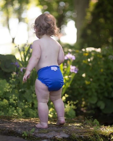 Applecheeks One-Size Pocket Diaper - Mrs Robinson