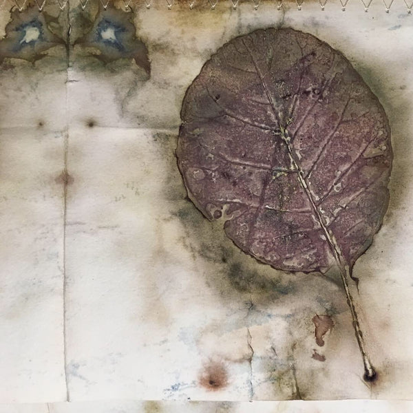 Avocado Dye with Eco Print and Rust with Maria Thomas Textile Artist - Sunday 9th June 2019