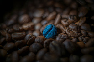 The Blue Bean Coffee Co.