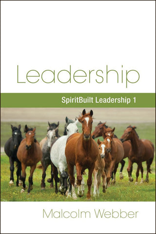 Leadership: SpiritBuilt Leadership 1 (eBook - PDF Download)