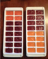 Homemade Baby Food Ice Cubes