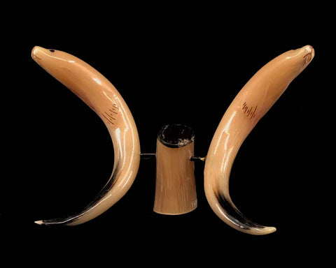 Horn- J. Shavings, Musk Ox Horn, Seal Pair