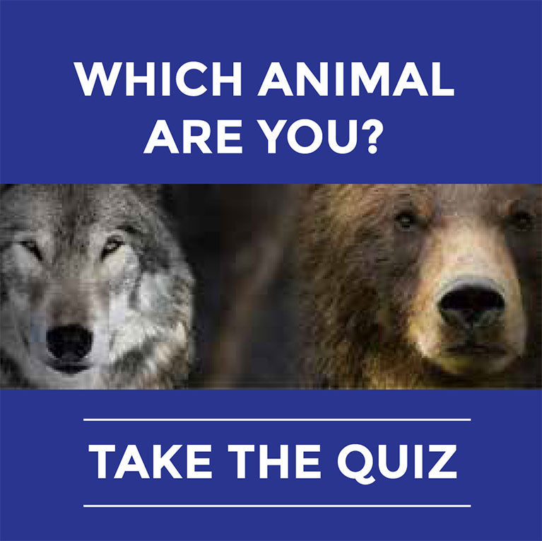 Which animal are you? Take the Quiz