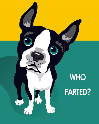 Who Farted Boston Terrier - Pop Art Prints