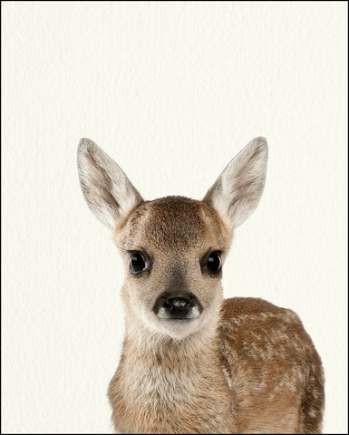 An image of a(n) Woodland Baby Fawn inspired Baby Animal Print.