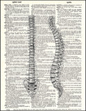 An image of a(n) Human Spine Dictionary Art Print.