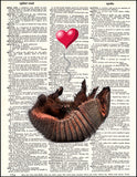 An image of a(n) Armadillo Love Dictionary Art Print.