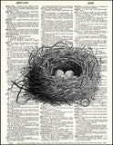 An image of a(n) Bird Nest with Eggs Dictionary Art Print.