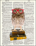 An image of a(n) Wise little Owl Dictionary Art Print.