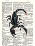 An image of a(n) Scorpion Dictionary Art Print.