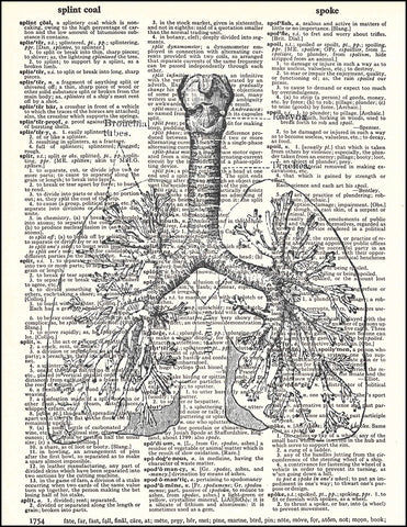 An image of a(n) Human Lungs Dictionary Art Print.