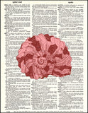 An image of a(n) Red Seashell Dictionary Art Print.