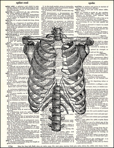 An image of a(n) Human Rib Cage Dictionary Art Print.