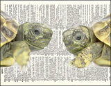 An image of a(n) Turtle Love Dictionary Art Print.