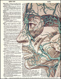An image of a(n) Human Face and Veins Dictionary Art Print.