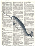 An image of a(n) Narwhal Dictionary Art Print.