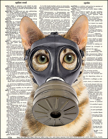 An image of a(n) Fallout Kitty Dictionary Art Print.