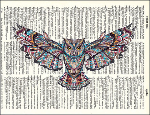 An image of a(n) Zen Owl Dictionary Art Print.