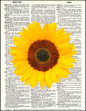 An image of a(n) Sunflower Dictionary Art Print.